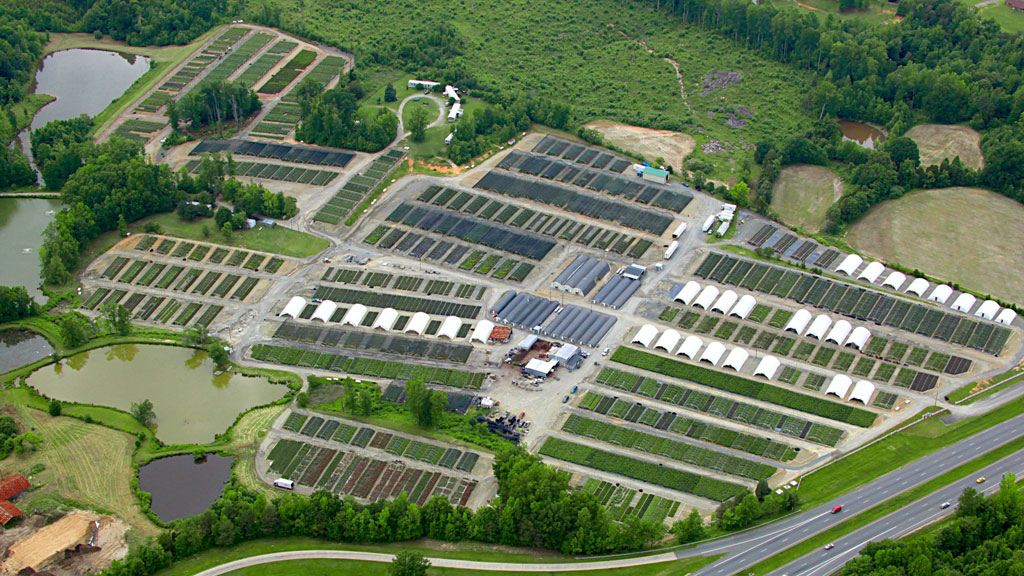 Buds & Blooms Nursery Aerial Photo